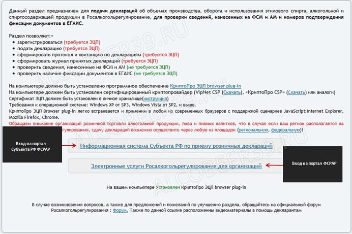 Инструкция По Декларации По Прибыли